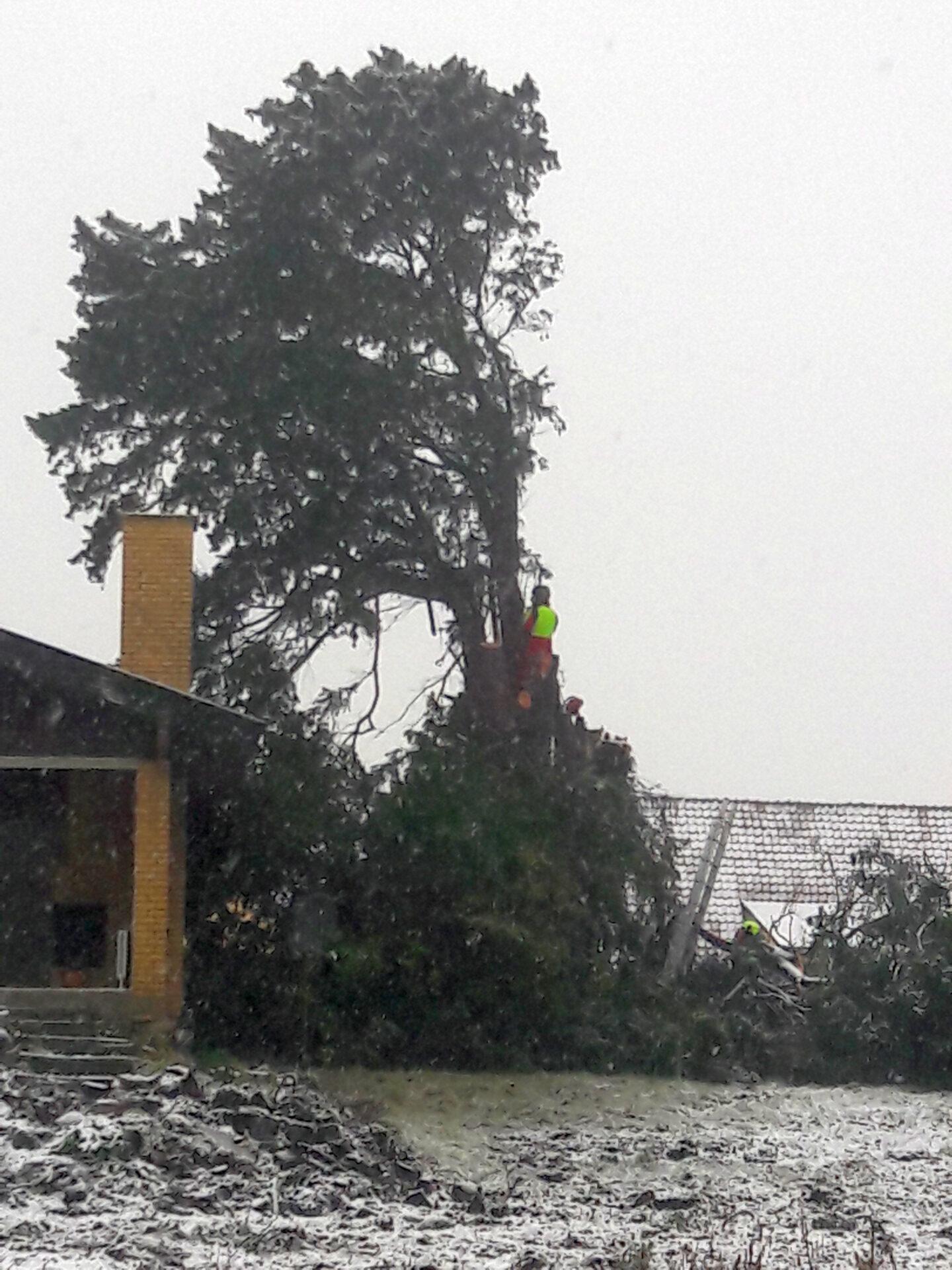 Leonora Christinas taks under nedrivning 3. februar 2021